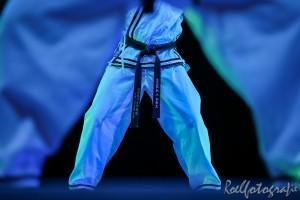 gala-der-gevechtskunsten-budo-ryu-2014-roelfotografie-1273