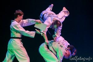 gala-der-gevechtskunsten-budo-ryu-2014-roelfotografie-1722