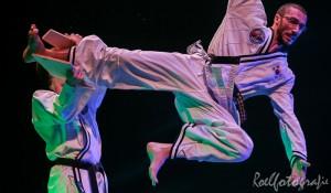 gala-der-gevechtskunsten-budo-ryu-2014-roelfotografie-1770