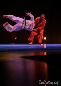 gala-der-gevechtskunsten-budo-ryu-2014-roelfotografie-1784