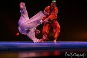 gala-der-gevechtskunsten-budo-ryu-2014-roelfotografie-1786