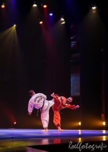 gala-der-gevechtskunsten-budo-ryu-2014-roelfotografie-1799