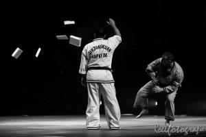 gala-der-gevechtskunsten-budo-ryu-2014-roelfotografie-1822